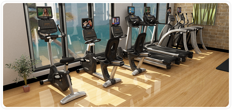 3D Gym Layout Sample